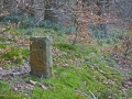 A walk around the Rhyswg, Cwmcarn, led by Rob Southall, in search of the Lost farmsteads