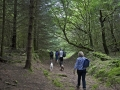 CTS walk to Pwll Tra (Pool of Avarice) 22nd June 2014 - led by Rob Southall